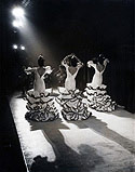 Flamenco Troupe Performs